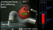 Разработват медицински робот, вдъхновен от пипалата на октопод