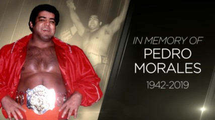 Tribute to WWE Hall of Famer Pedro Morales