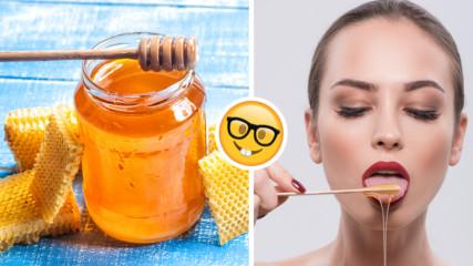 Ако не ядете мед, то тези 5 причини ще ви накарат да го правите!