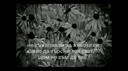 Sinan Sakic - Umrecu s Osmehom