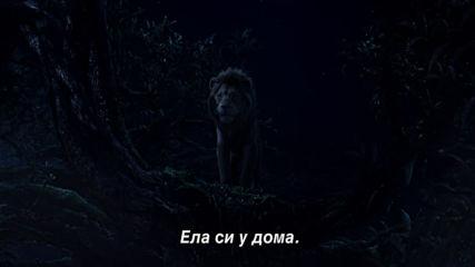 """Цар Лъв - ТВ спот """"Вкъщи"""""""