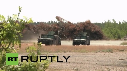 Lithuania: U.S. top brass inspects NATO joint drills