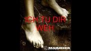 ~ Rammstein - Ich Tu Dir Weh ( Liebe Ist Fur Alle Da Album ) ~