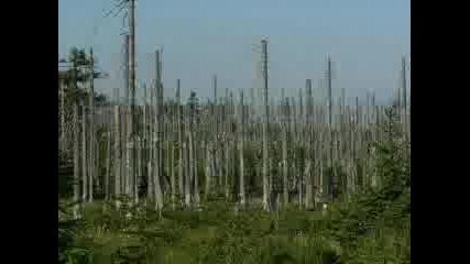 Природата И Човекът