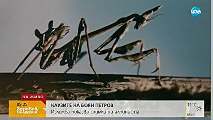 Откриха изложба със снимки на Боян Петров