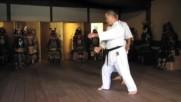 Worlds Karate Legend Morio Higaonna Goju-ryu Master 10th Dan- как се тренира!