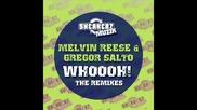 Melvin Reese & Gregor Salto - Whoooh Superfreakz Remix