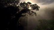 Релакс и Природа - част 1