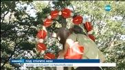 Хиляди се събират в Кръстова гора с надежда за здраве