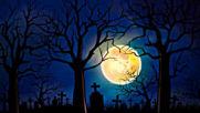Magical Halloween Music Magic Twilight Woods Beautiful Enchanting Dark
