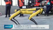 "Роботизирано куче влезе в АЕЦ ""Чернобил"""