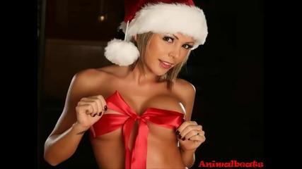 • Весела Коледа На Всички •