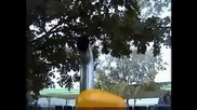 1 Cylinder Caterpillar diesel едноцилиндров дизел