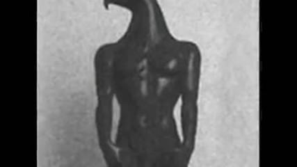 Човекът-птица