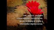 Недялко Йорданов - Любов Необяснима