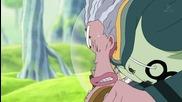 One Piece 391 bg