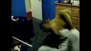 Lion Attacks Black Man
