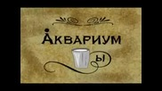 Аквариум - Стаканы