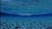 Най-успокояващите звуци от природата * 10 * Nature Sound * The Most Relaxing Sounds