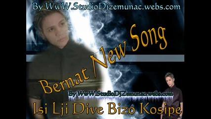 Bernat 2011 New Song - Isi Lji Dive Bizo Kosipe - By Studiodjzemunac.webs.com.wmv