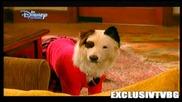 Куче С Блог Бг Аудио С02 Е16 Цял Епизод