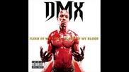 Black Violin Ft. Dmx - Im A Rider