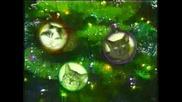 Коледните Котки Пеят White Christmas