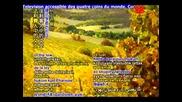 Евангелие от Марко. Глава 1 - 4 / Gospel of Mark, Excerpts of Chapters 1 - 4