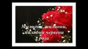 Алла Пугачова - Миллион Алых Роз (превод )