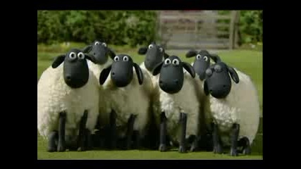 Shaun The Sheep - The Kite