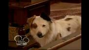 Куче С Блог Бг Аудио С01 Е05 Цял Епизод