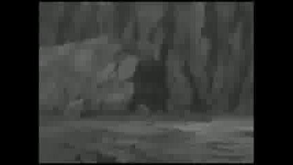 Naruto - Shippuuden - Amv