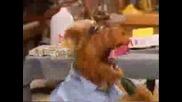 Alf I Eminem