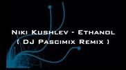 Niki Kushlev - Ethanol ( Dj Pascimix Remix )