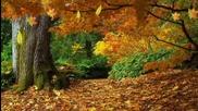 c est l automne
