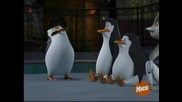The Penguins of Madagascar - Misfortune cookie