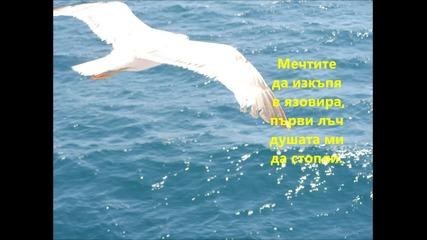 Като птиците