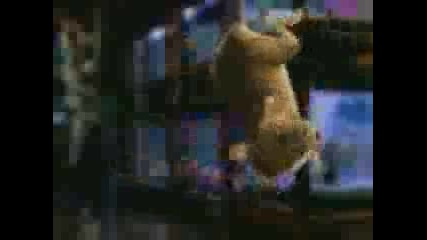 Реклама С Мишки