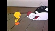 Tweety And Sylvester - Catty Cornered
