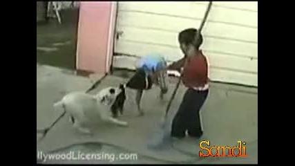 Куче , влачи дете за косата