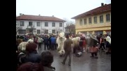 Кукерски Празници В Село Виноградец