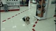 Какво става когато оставиш русначе без надзор в супермаркет