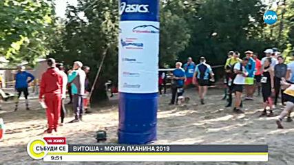 """Над 120 участници в надпреварата """"Витоша – моята планина"""""""