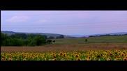 Един ден в... Мещица - time lapse project