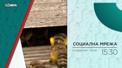 """В """"Социална мрежа"""" на 19 април от 15:30 ч. очаквайте"""