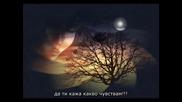 Смразяващ текст!!!! Dino Merlin - Da Ti Kazem Sta Mi Je / Sa Mojih Usana + Превод