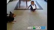 Бебе и куче в луда игра