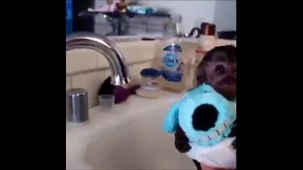 Къпане На Малка Маймунка