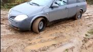 Умник със Nissan Primera p12