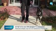 Кучетата на Байдън ще пристигнат в новия си дом